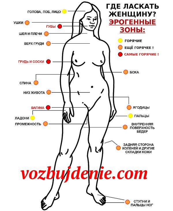 Смотреть порно женщины зоны яндекс эрогенные
